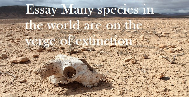 pte sample essay many species in the world are on the verge of  more and more wild animals are on the verge of extinction and others are on the endangered list what are the reasons for this